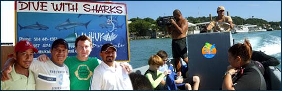 Shark Dive Roatan